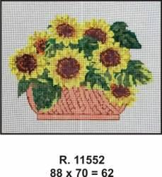 Tela R. 11552