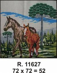 Tela R. 11627