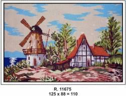 Tela R. 11675